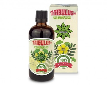 Трибулус + Гинко